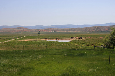Farm Pond - Deseret Ranch